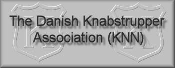 Link to the Danish Knabstrupper breed society website