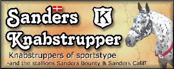 link to Jenda Sanderson's Knabstrupper website